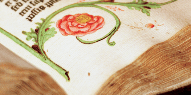 Vivid reds, pinks and greens of the illustrations run alongside the text in the Gutenberg Bible, the first printed Bible, which was produced in Mainz, Germany, in 1455. Photo by Natasha D'Schommer, Princeton University