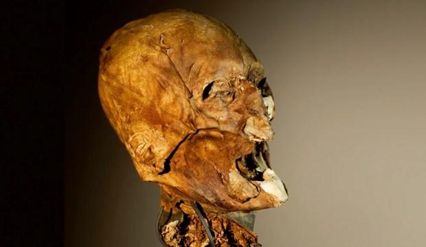 Henry IV head