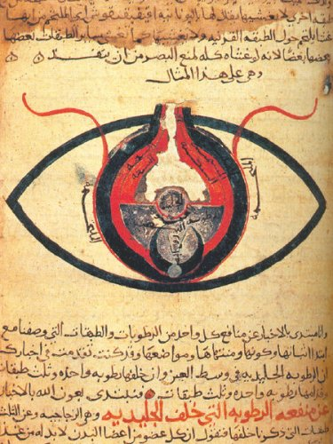 Anatomy of the Eye, from about the year 1200