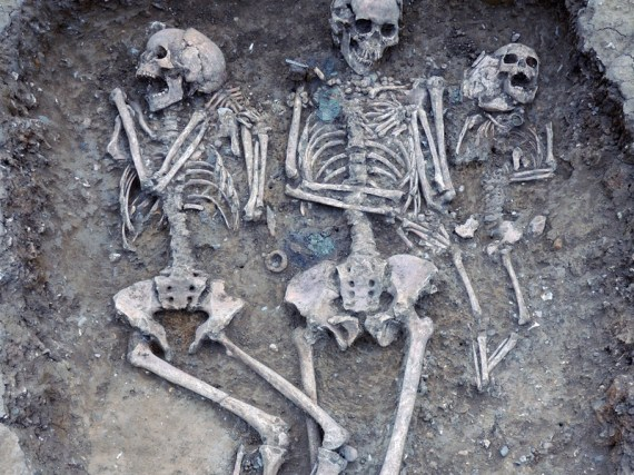 This triple burial from Oakington Cambridgeshire included metal and amber grave goods with continental European characteristics. DNA of ten samples from Oakington and from nearby sites were sequenced to reveal Anglo-Saxon immigration history in England. Photo by Duncan Sayer