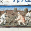 In the Wake of Death: Socioeconomic Effects of the Black Death in Medieval England