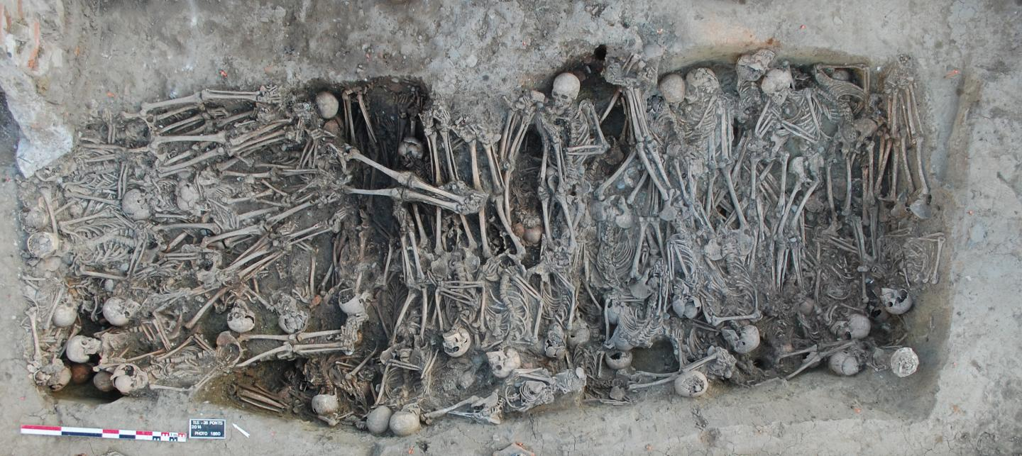 New insights into the genetic evolution of the Black Death - Medievalists.net