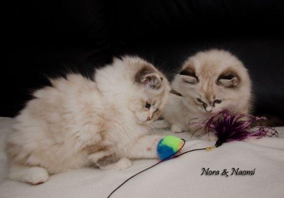 Nora & Naomi