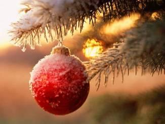 Fai gli acquisti di Natale a Todi, il parcheggio è gratis