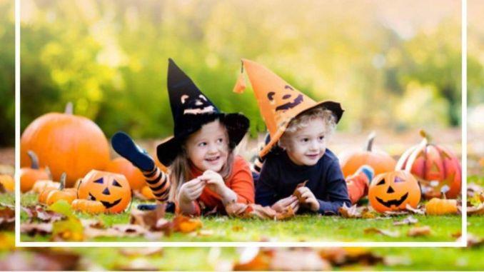 Deruta, aspettando Halloween, arriva l'iniziativa Viaggio di una Zucca