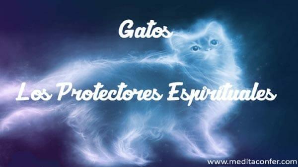Los gatos son protectores espirituales.