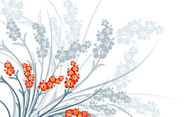 Meditazione dei fiori (flowers meditation)