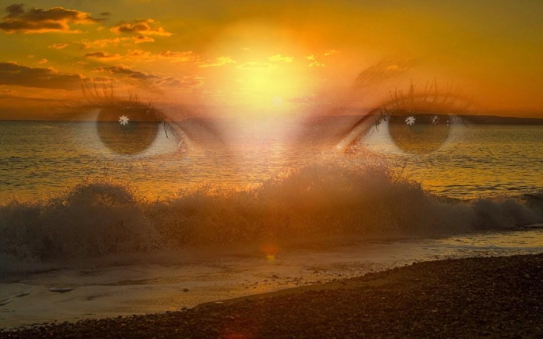 להתבונן, לחוות, להיות.