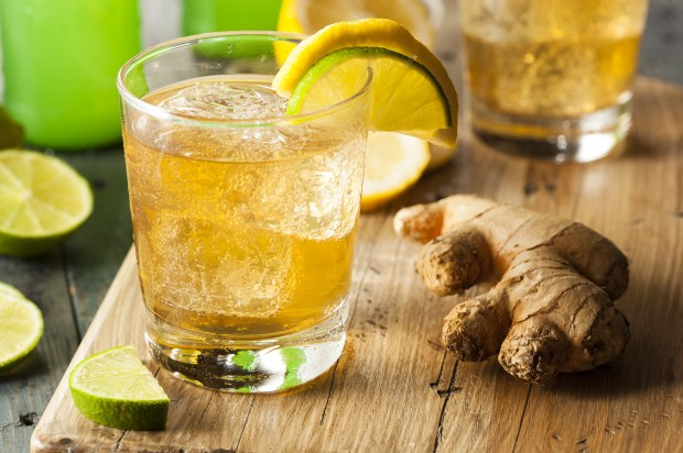 tea detox, cleanse your body, natural weight loss, cleansing diet, new year detox plan,