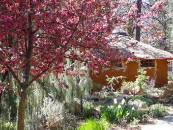 Temple of Joy mud yurt