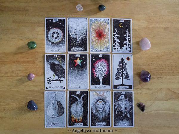 The Wild Unknown Tarot 5 - Blog Médiumnité et Voyance