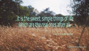 sweet, simple things of life