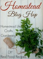 Homestead-Blog-Hop-5-510x700