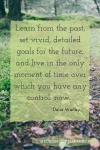 Learn from the past, set vivid, detailed goals for the future, and live in the only moment in time