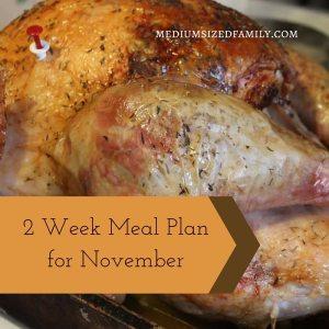 2 Week Meal Plan for November