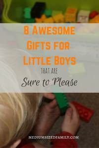 8 Awesome Gifts for Little Boys That Are Sure to Please. Looking for gift ideas for boys? This list will give you some sure hits. Don't buy the toy with all the flash and the noise! Get one of these tried and true favorites.