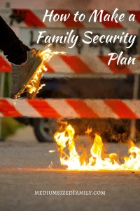 Make a Family Security Plan  Here's how to put a family safety plan in place to keep your loved ones safe.
