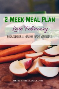 2 Week Meal Plan for Late February- Frugal ideas for all meals and snacks, plus recipes!
