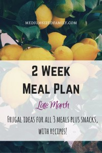 2 Week Meal Plan for Late March: All 3 meals and snacks with recipes!