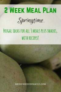 2 Week meal plan for springtime. A frugal meal plan with all meals and snacks included. Even has recipes!