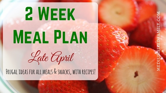 2 Week Meal Plan for Late April
