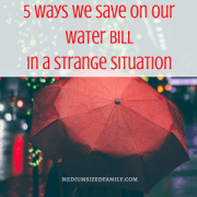 5 Ways We Save On Our Water Bill in a Strange Situation