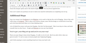 Make money from home. Behind the scenes of the blog. This is your view from WordPress.