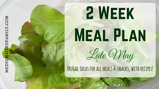 2 Week Meal Plan for Late May