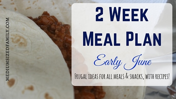2 Week Meal Plan for Early June
