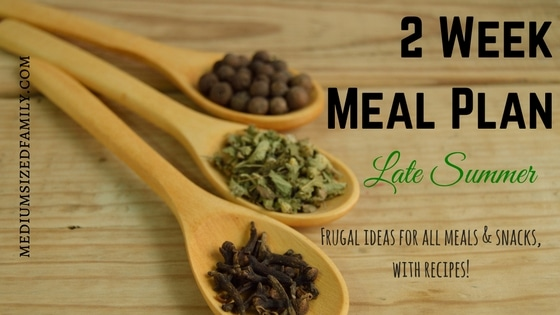 2 Week Meal Plan for Late Summer