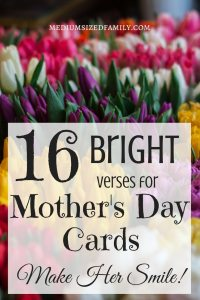 I love the funny quotes here to add to your Mother's Day cards! But there are also Mother's Day poems and some really sweet quotes you can use, too. <3