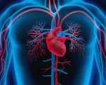 Troubles circulatoires tissulaires