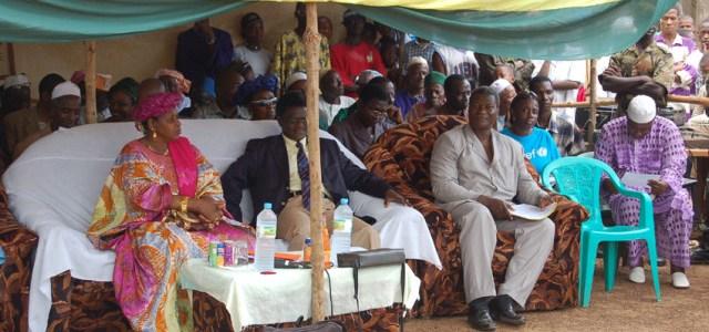 Ebola in Guinea: Zustandsanalyse eines erkrankten Staatskörpers