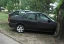 zeleni parking