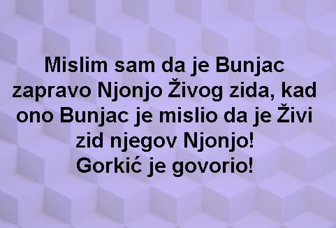 Njonjo