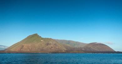 Galapagos: Na vulkanu Isabela otkrivene dvije nove vrste guštera gekona