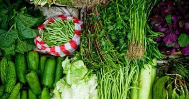 Samo u prva dva mjeseca ove godine uvezli smo povrća za 29 milijuna eura