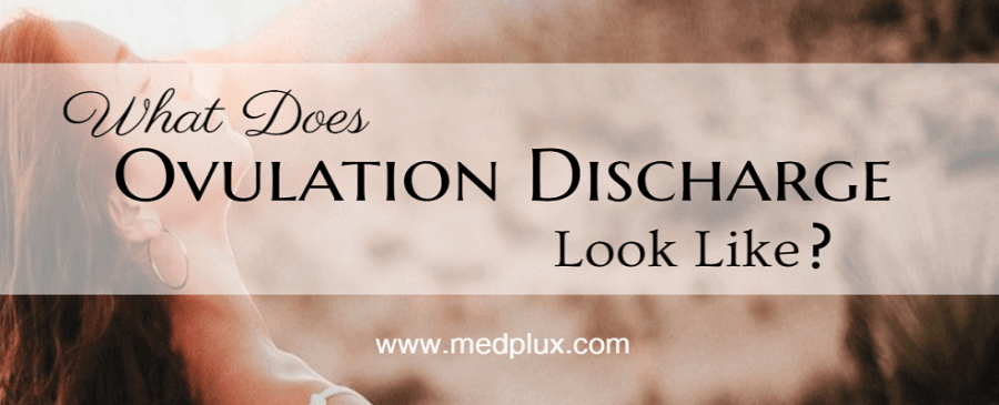 Ovulation Discharge or Pregnancy? 5 Easy Ways To Know ... Ovulation Discharge
