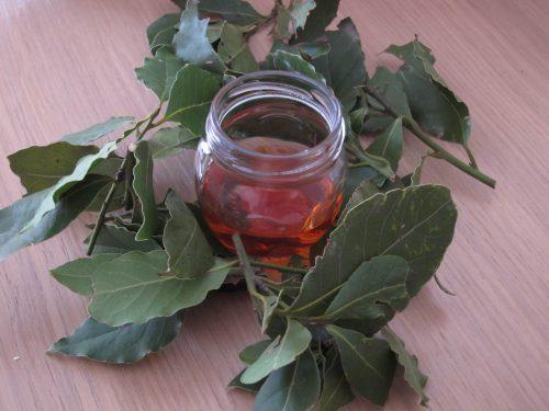 лавровые листья для лечения ушей