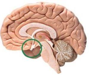 симптомы аденомы гипофиза