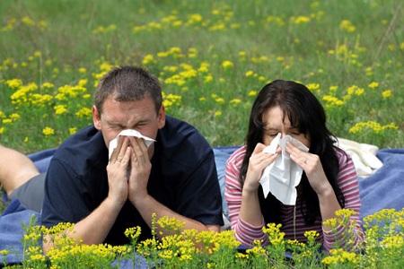 Часто аллергия возникает весной при цветении растений
