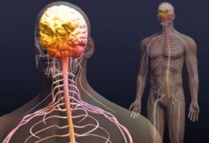нарушение функции нервной системы