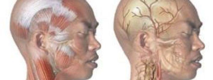 Бессонница может быть симптомом нарушений в работе сердца