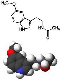 Гормон эпифиза мелатонин