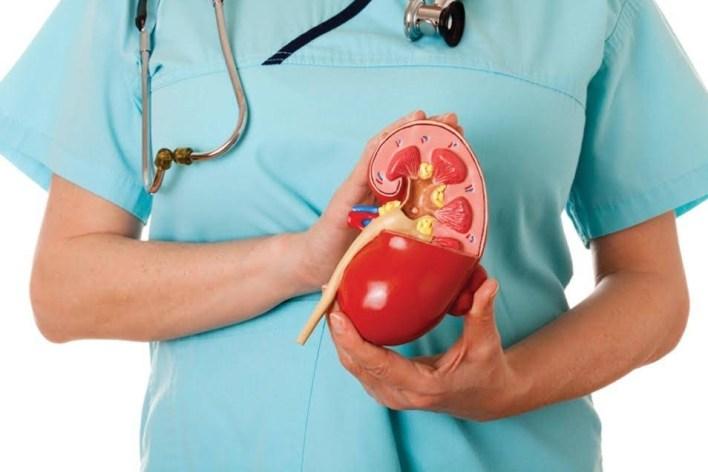 Що робити, якщо застудив нирки?