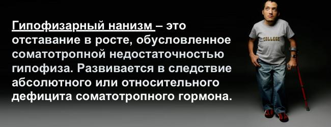 stg-somatotropnyj-gormon-gipofizastg-somatotropnyj-gormon-gipofiza