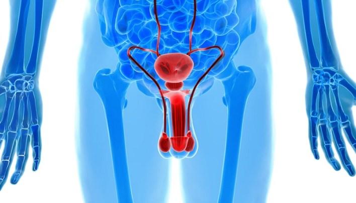 Причини, симптоми і лікування уретропростатиту
