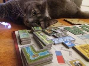 Oso Park. A nuestro gato también le gusta!