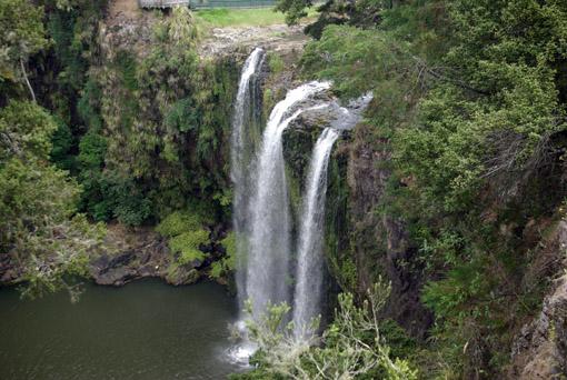 Whangarei-Falls