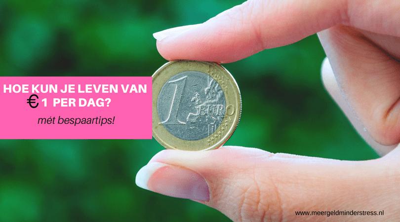 Leven van een euro per dag, kan dat? (Met creatieve bespaartips!)